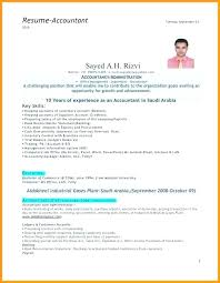 resume for an accountant senior accountant resume accountant resume format for experienced