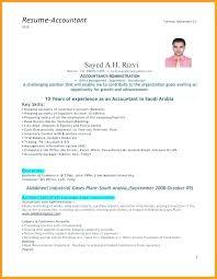 resume for an accountant senior accountant resume accountant resume format for experienced