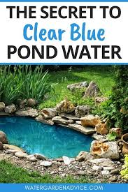 blue pond water tips small water