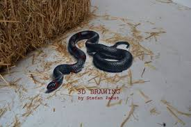 snake in 3d amazing drawings sketch ilration expressionism photorealism 3d painting