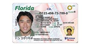 Florida Licence Driver Licence Licence Driver Number Number Driver Florida Number Licence Florida Florida Driver