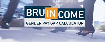 bruincome tools bruin financial our gender pay gap calculator reveals the pay gap in financial services both by organisational level and function specialism from analyst to director
