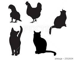 シルエット 猫のイラスト素材 2552654 Pixta