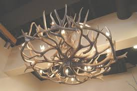 45 collection of antler chandelier colorado