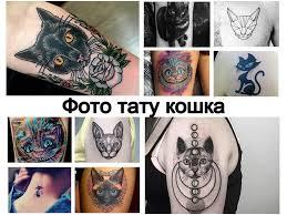 фото тату кошка примеры рисунков особенности значение эскизы