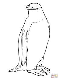 38 Penguin Coloring Pages Printable Printable Penguin Coloring
