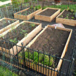 how to build a vegetable garden box. Vegetable Garden Box Diy 2 Sisters Anytown Usa Boxes How To Build A