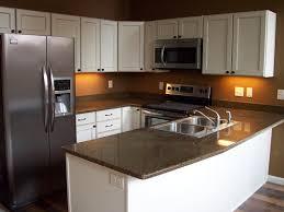Diy Kitchen Countertop Diy Kitchen Countertop Ideas Built In Dual Oven Modern Range Hood