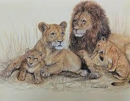 original pastel drawing african lion