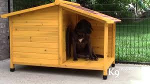 Creative Dog Houses K9 Kennel Store Tuscan Wood Dog House Youtube