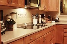 Vinyl Kitchen Backsplash Easy Vinyl Backsplash For The Kitchen Landeelucom