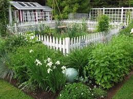 Small Picture 66 best Perennial Gardening images on Pinterest Perennial