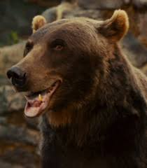 zookeeper movie wolf.  Zookeeper Bruce The Bear  On Zookeeper Movie Wolf N