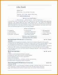 Free Word Document Resume Templates 24 Inspirational Free Resume Format In Word Document Resume 8