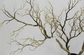 Artificial Dry Tree Branches For Indoor Decoration and Wedding Decoration