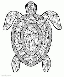 Our world is so exciting that every its particle may cause our curiosity and desire to explore it. Turtle Free Coloring Page Coloring Pages Printable Com