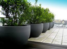Big Concrete Planters Urbis Globe Planters On Roof Terrace Pinned To Garden Design