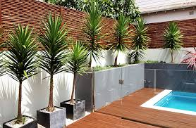 Small Picture Landscapers Sydney Landscaping Garden Maintenance Company