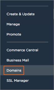 How do I access the Domain Control Panel?