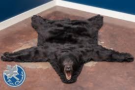 black bear black bear skin rugs
