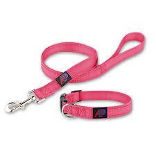 Reflective Nylon Dog Collar Leash Waste Bag Set Be