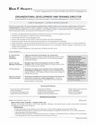 Skills Based Resume Templates Beauteous Skills Based Resume Templates Elegant Doctors Letters Templates