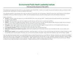 Sample Essay On Personal Leadership Development Plan Template