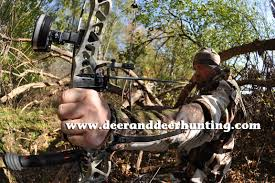 Bow Hunting Tip Carefully Consider Your Draw Weight