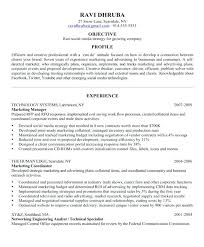 Professional Achievement Examples Achievement Resume Examples Achievement Resume For Absolute