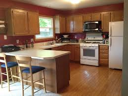 best kitchen cabinet paintBest Kitchen Cabinet Paint Colors  Home Design Ideas