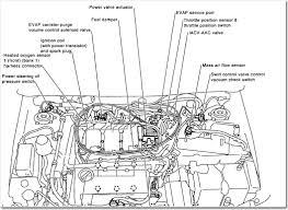 similiar nissan engine diagram keywords nissan maxima engine diagram moreover 2002 nissan altima 2 5 engine