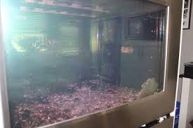 glass oven doors exploding5184 x 3456