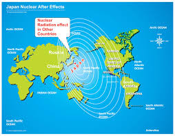 top keywords picture for nuclear radiation effects on environment nuclear radiation effects on environment