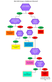 What Does A Flow Chart Look Like Biological Materials Iata Category Classification Flow Chart
