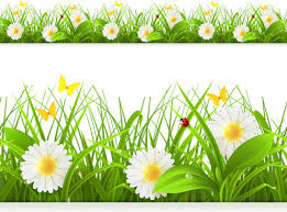 spring flowers border clipart. Interesting Border Spring Flower With Grass Art Background With Spring Flowers Border Clipart G