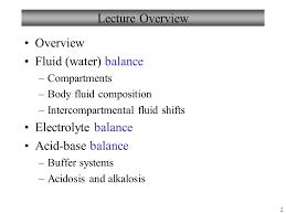 Chapter 26 Fluid Electrolytes And Acid Base Balance
