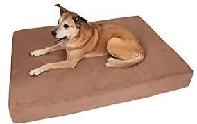 big barker dog beds. Delighful Barker Big Barker 7u0026quot Pillow Top Orthopedic Dog Bed  XL Size 52 X 36 Inside Beds