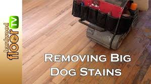 how to remove urine odor from wood floors large size of hardwood floor dog out removing