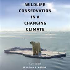 essay importance of conservation of nature at essays orgpl essay importance of conservation of nature pic