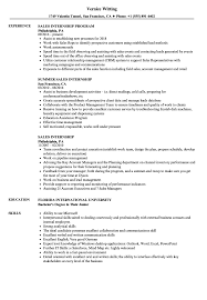 Resume With Internship Experience Examples Sales Internship Resume Samples Velvet Jobs