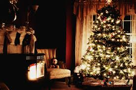 christmas tree tumblr photography. Contemporary Christmas Christmas Tree Inside Tree Tumblr Photography M