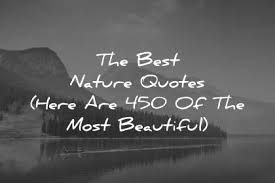 Blessed Sunday Quotes Classy The Best Nature Quotes Here Are 48 Of The Most Beautiful
