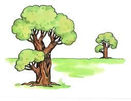 Комплексная контрольная работа за триместр класс С К О vii  9 Сосчитай сколько всего деревьев