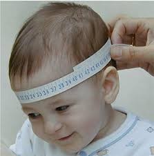 Baby Head Size Chart Inches Head Circumference Calculator