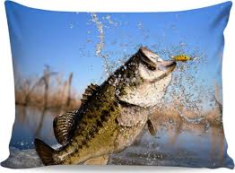 largemouth bass jumping.  Largemouth With Largemouth Bass Jumping
