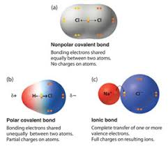 Ionic And Covalent Bonds Venn Diagram Ionic And Covalent Bonding Texas Gateway