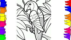 1280x720 how to draw step by step bird coloring pages for kids parrot