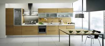 Small Picture ikea modern kitchen cabinets best interior house paint