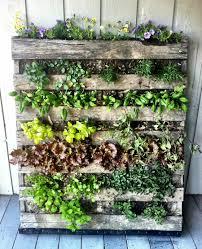 vertical gardens for urban food growing homluv vertical pallet vegetable garden