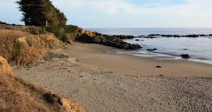Shell Beach Sea Ranch Ca California Beaches